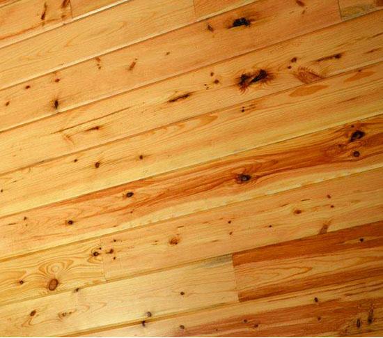 Lumber Jack Pine